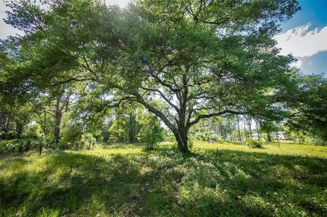 Okeechobee, FL 34972 :: Better Homes & Gardens Real Estate Thomas Group