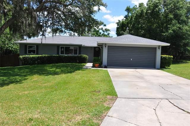 3449 SE 30TH Terrace, Ocala, FL 34471 (MLS #OM620281) :: Better Homes & Gardens Real Estate Thomas Group