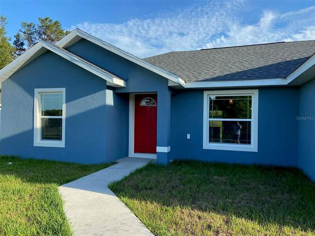 15025 SW 46 Circle, Ocala, FL 34473 (MLS #OM620300) :: Young Real Estate