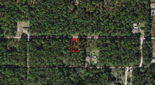 SW 38TH Place, Ocala, FL 34481 (MLS #OM620325) :: Kelli and Audrey at RE/MAX Tropical Sands