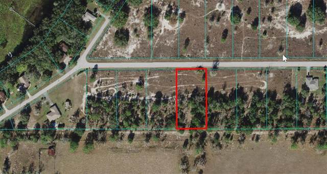 Lot 32 Tiger Lake Boulevard, Dunnellon, FL 34431 (MLS #OM620329) :: Southern Associates Realty LLC