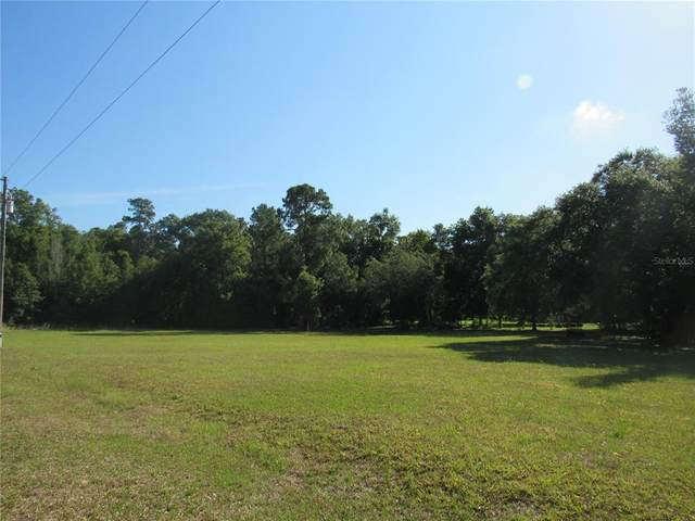 0000 SW 202 Avenue, Dunnellon, FL 34431 (MLS #OM620331) :: The Robertson Real Estate Group