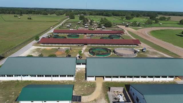 4695 NE 112TH Lane, Anthony, FL 32617 (MLS #OM620344) :: Better Homes & Gardens Real Estate Thomas Group