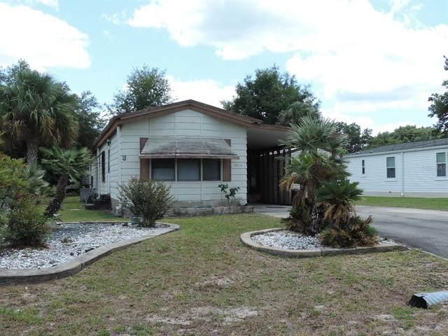 6816 NE 5TH Street, Ocala, FL 34470 (MLS #OM620359) :: Delgado Home Team at Keller Williams
