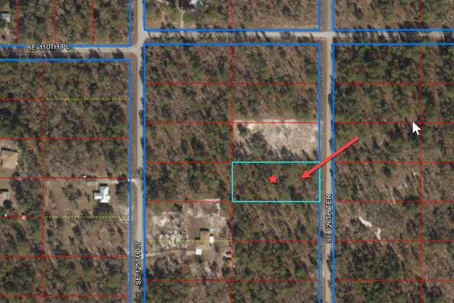 TBD SE 126TH Terrace, Dunnellon, FL 34431 (MLS #OM620362) :: RE/MAX Marketing Specialists