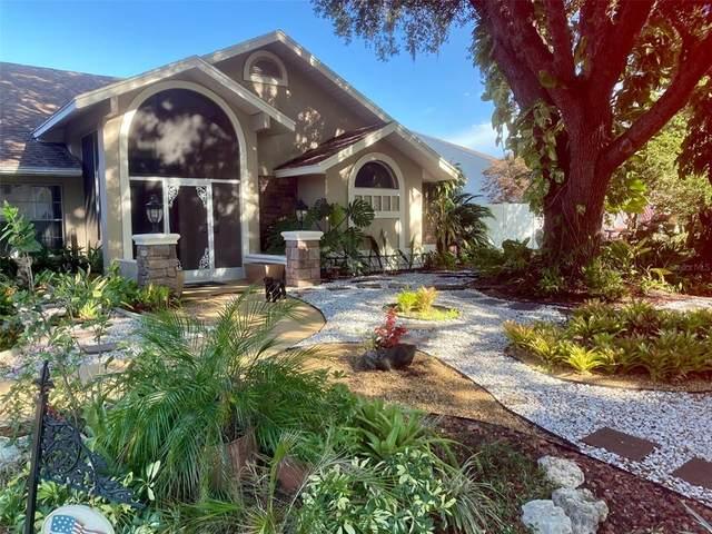 5225 Saltamonte Drive, New Port Richey, FL 34655 (MLS #OM620375) :: Carmena and Associates Realty Group