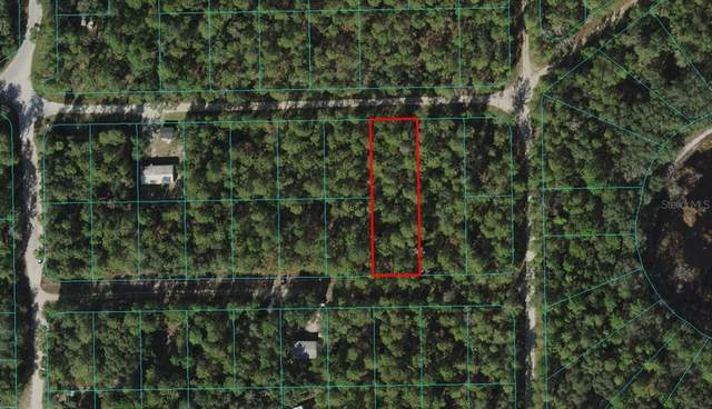 TBD NE 239TH Lane, Fort Mc Coy, FL 32134 (MLS #OM620385) :: The Kardosh Team