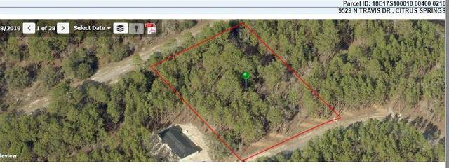 9529 N Travis Dr, Citrus Springs, FL 34434 (MLS #OM620471) :: Armel Real Estate