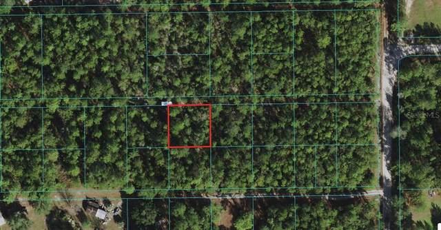 NE 157TH Place, Fort Mc Coy, FL 32134 (MLS #OM620565) :: Armel Real Estate