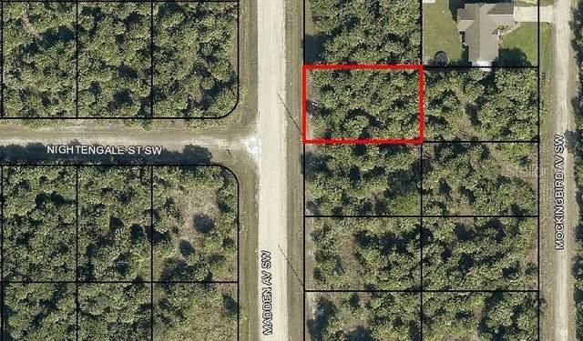 3349 Madden Avenue SW, Palm Bay, FL 32908 (MLS #OM620588) :: The Hesse Team
