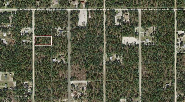 0 SW 138 Terrace, Dunnellon, FL 34432 (MLS #OM620599) :: Armel Real Estate
