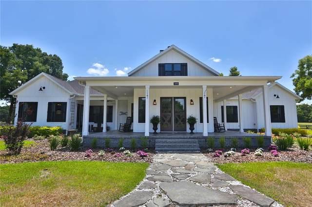3480 SE Highway 42, Summerfield, FL 34491 (MLS #OM620608) :: Everlane Realty