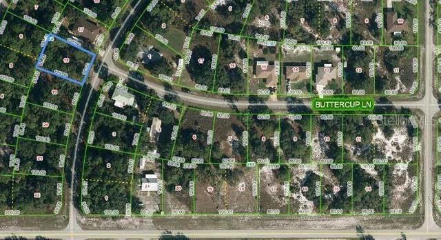 908 Amaranth Street, Lake Placid, FL 33852 (MLS #OM620701) :: Delgado Home Team at Keller Williams