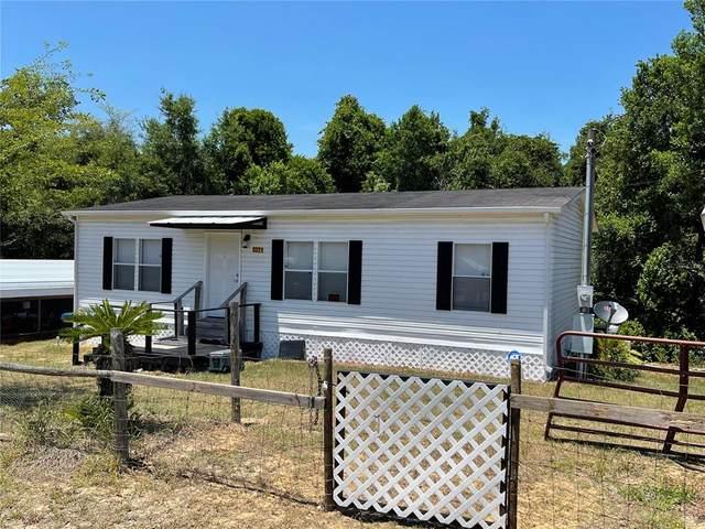 3271 E Buckskin Lane, Hernando, FL 34442 (MLS #OM620782) :: Alpha Equity Team