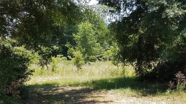 TBD NW 8TH Place, Ocala, FL 34482 (MLS #OM620819) :: Armel Real Estate