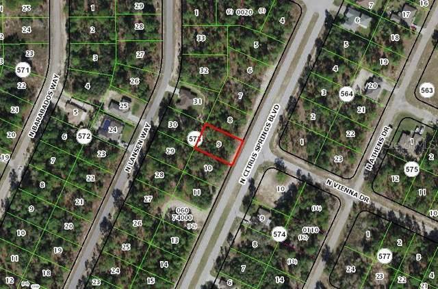 8928 N Citrus Springs Boulevard, Citrus Springs, FL 34433 (MLS #OM620856) :: Kelli and Audrey at RE/MAX Tropical Sands
