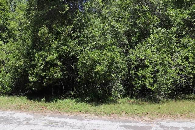 1590 W Attucks Lane, Dunnellon, FL 34434 (MLS #OM620949) :: Armel Real Estate