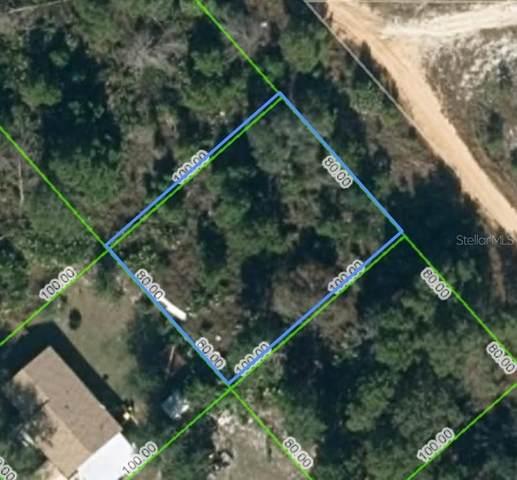1867 N Lynbrook Road, Avon Park, FL 33825 (MLS #OM620963) :: Frankenstein Home Team