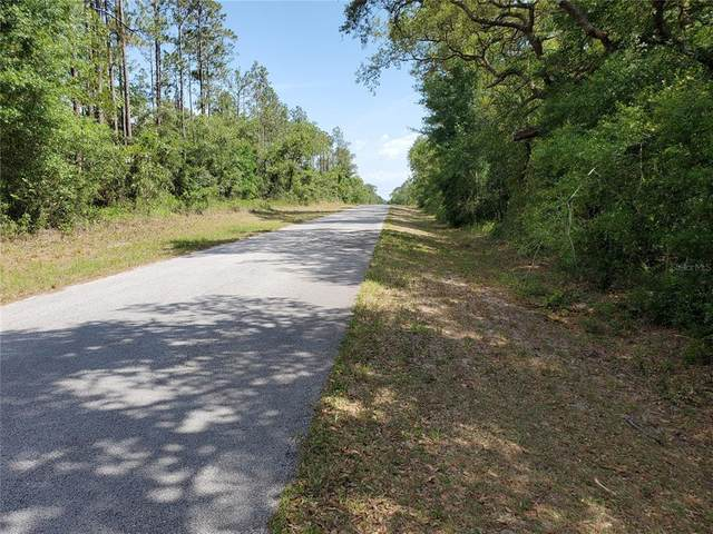 Lot 5 SW Channel Heights Court, Dunnellon, FL 34431 (MLS #OM620981) :: RE/MAX Marketing Specialists