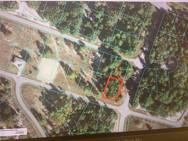 Malauka Circle, Ocklawaha, FL 32179 (MLS #OM621026) :: Griffin Group