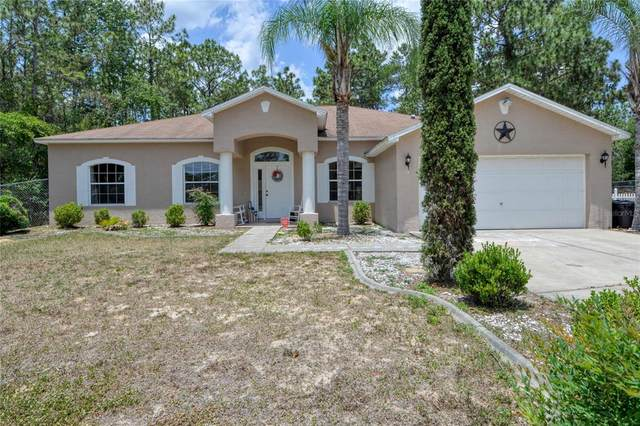 13 Maple Run Court, Ocala, FL 34472 (MLS #OM621076) :: Your Florida House Team