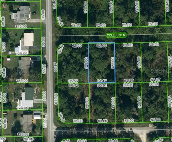 205 Colleen Lane, Lake Placid, FL 33852 (MLS #OM621105) :: The Heidi Schrock Team