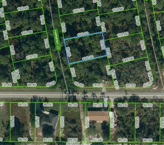 205 Harmony Court, Lake Placid, FL 33852 (MLS #OM621106) :: The Heidi Schrock Team