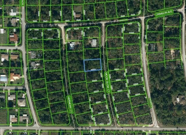 224 Moon Glow Court, Lake Placid, FL 33852 (MLS #OM621147) :: The Heidi Schrock Team