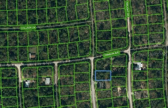 233 Dreamers Drive, Lake Placid, FL 33852 (MLS #OM621148) :: The Heidi Schrock Team