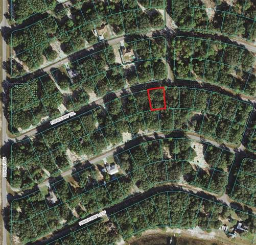Fisher Way Trail, Ocklawaha, FL 32179 (MLS #OM621172) :: Everlane Realty