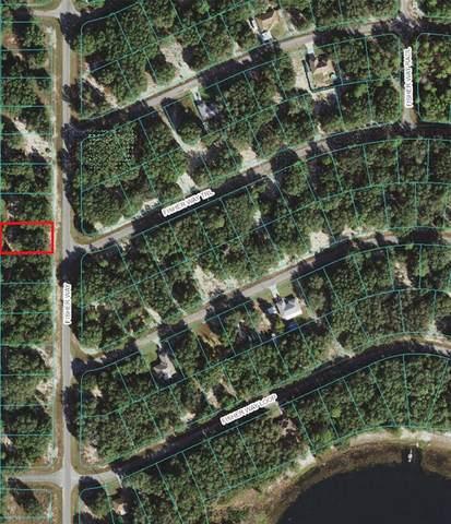 Fisher Way, Ocklawaha, FL 32179 (MLS #OM621174) :: Everlane Realty