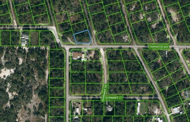 364 Fawnwood Avenue, Lake Placid, FL 33852 (MLS #OM621227) :: Expert Advisors Group