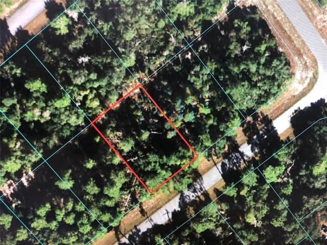 TBD SW 165 Loop, Ocala, FL 34473 (MLS #OM621240) :: Southern Associates Realty LLC