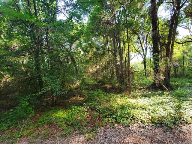 0 Se 142Nd Lane, Summerfield, FL 34491 (MLS #OM621245) :: Armel Real Estate