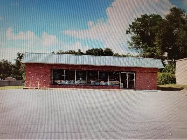 6011 E Turner Camp Road, Inverness, FL 34453 (MLS #OM621278) :: Everlane Realty