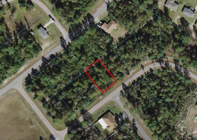 0 SW 168 Loop, Ocala, FL 34473 (MLS #OM621288) :: The Robertson Real Estate Group