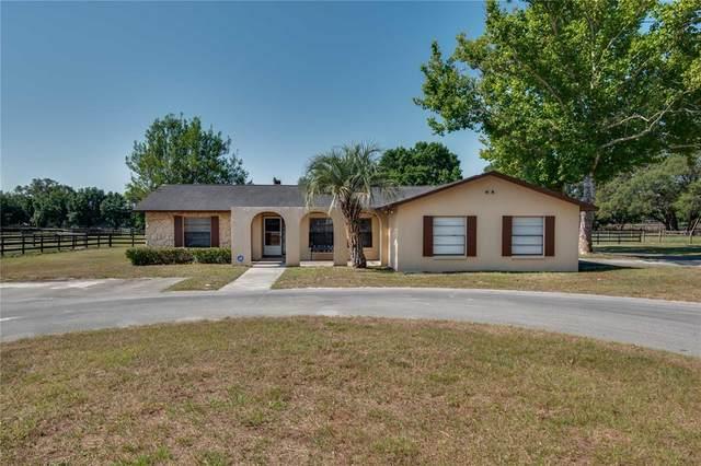 6650 SW 66TH Street, Ocala, FL 34476 (MLS #OM621324) :: Better Homes & Gardens Real Estate Thomas Group