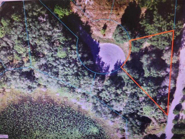 TBD Malauka Radial Track, Ocklawaha, FL 32179 (MLS #OM621385) :: Your Florida House Team