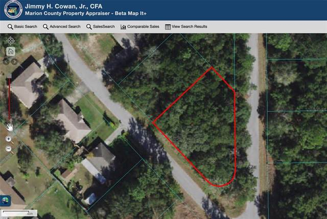 TBD Water Track Court, Ocala, FL 34472 (MLS #OM621388) :: The Robertson Real Estate Group