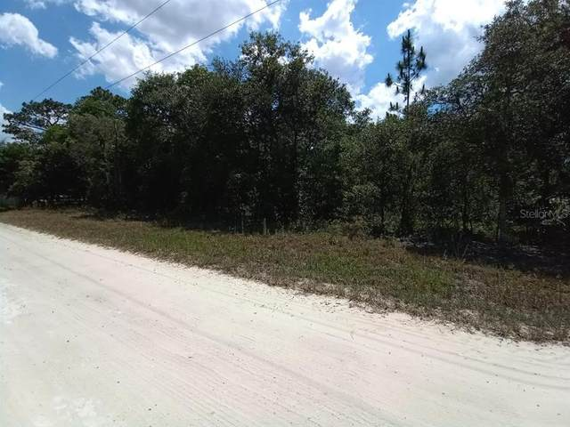 0 NE 142ND Terrace, Williston, FL 32696 (MLS #OM621393) :: Armel Real Estate