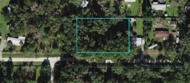 13575 SW 3RD Place, Ocala, FL 34481 (MLS #OM621400) :: Baird Realty Group