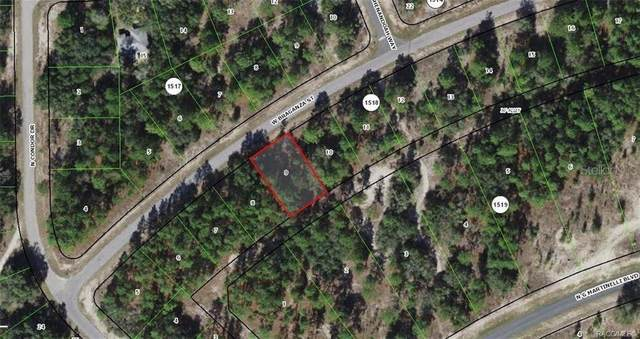 2864 W Braganza Street, Dunnellon, FL 34433 (MLS #OM621401) :: Your Florida House Team