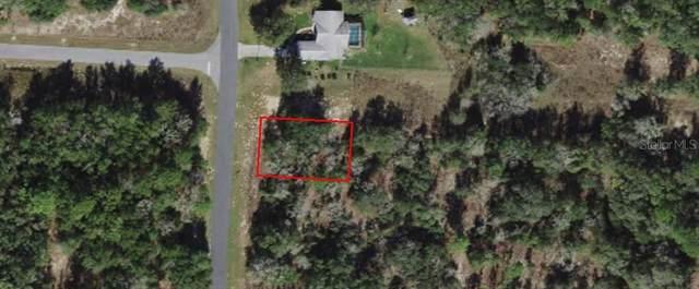 1687 W G Martinelli Boulevard, Citrus Springs, FL 34434 (MLS #OM621427) :: Armel Real Estate