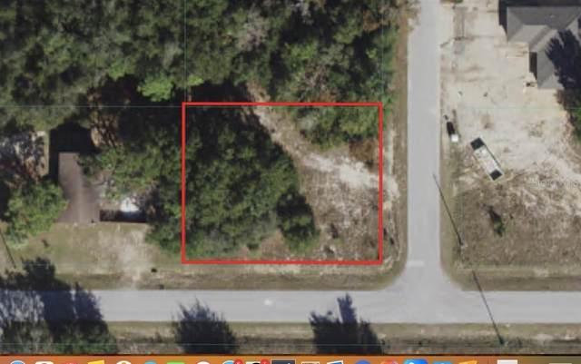 TBD SE 159TH Street, Summerfield, FL 34491 (MLS #OM621459) :: The Hustle and Heart Group