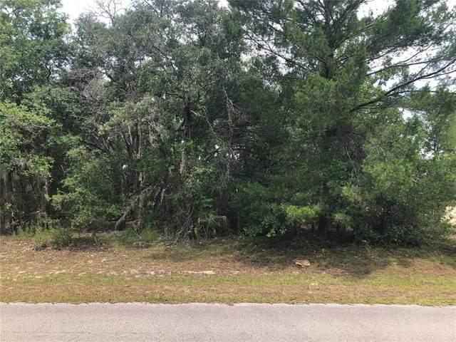 0 SW 147TH ST Road, Ocala, FL 34473 (MLS #OM621477) :: Everlane Realty