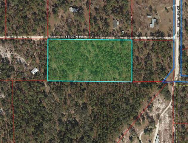 11850 & 11950 SE 59TH Place, Morriston, FL 32668 (MLS #OM621492) :: RE/MAX Local Expert