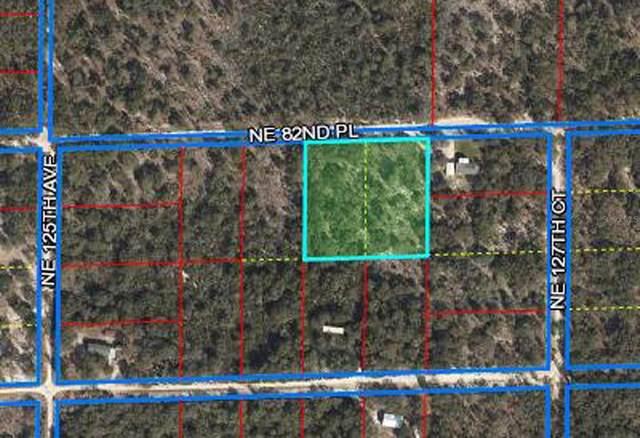 12690 NE 82ND Place, Bronson, FL 32621 (MLS #OM621533) :: The Robertson Real Estate Group