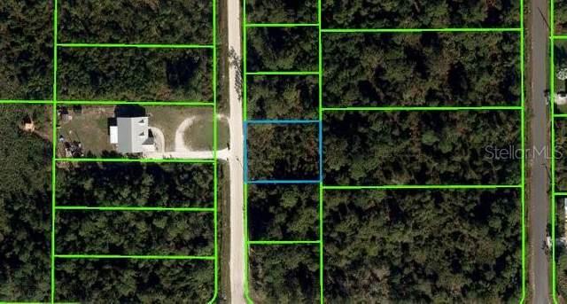 6110 Hazel Road, Sebring, FL 33875 (MLS #OM621536) :: The Price Group
