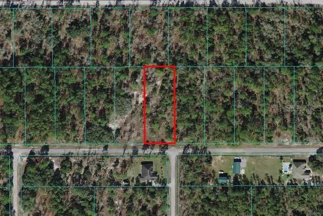 TBD SW Rainelle Road, Dunnellon, FL 34431 (MLS #OM621542) :: Frankenstein Home Team