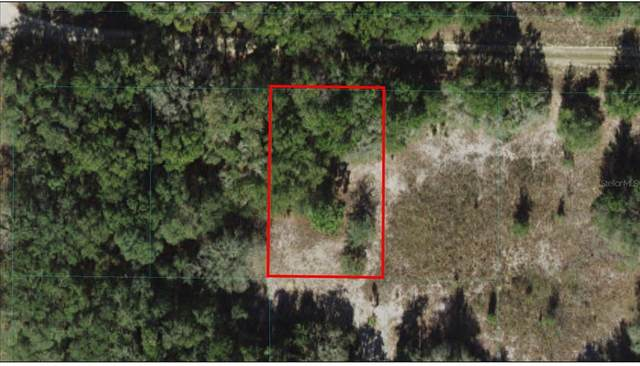 SW 104TH Lane Lot 3, Dunnellon, FL 34432 (MLS #OM621551) :: The Hustle and Heart Group